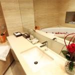 Bathroom Sink SkycityHorizon OpeningJuly 13th 2011