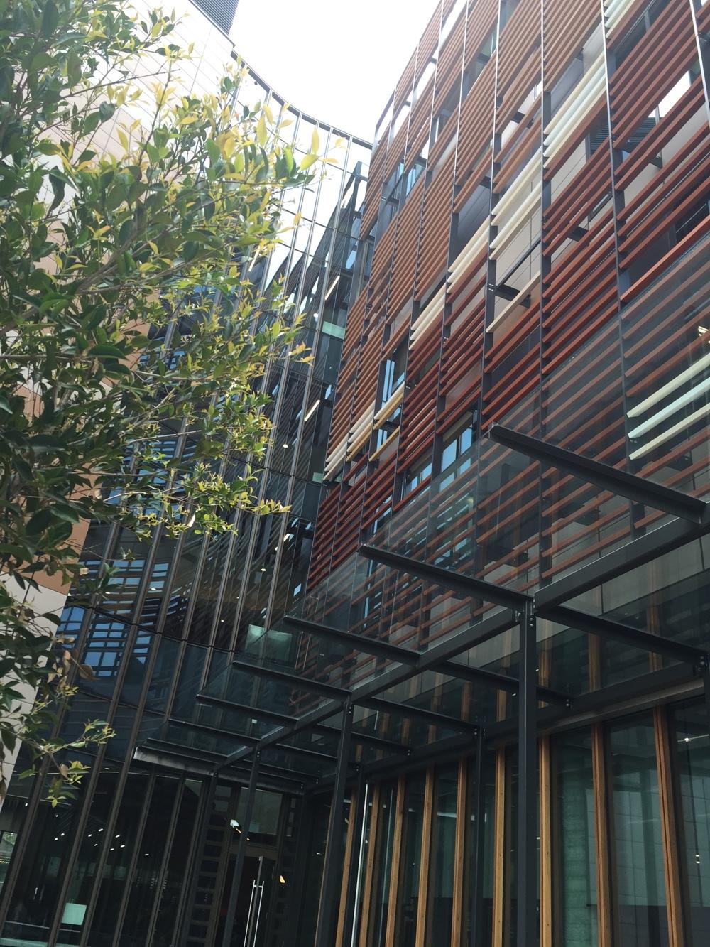 Exterior Window TIling University of Business Sydney